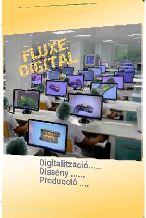 FLUXE_DIGITAL